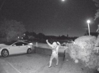 Ladrões roubam Tesla trancado em apenas 30 segundos
