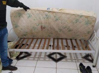 Menina de 14 anos é vítima de estupro coletivo em Porto Xavier