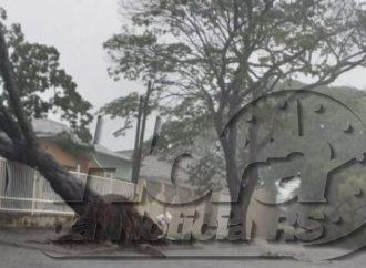 Atenção! Defesa Civil alerta para chegada de ventos de até 100km/h