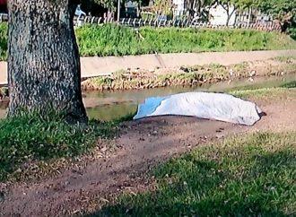 Corpo de homem é encontrado no Arroio Dilúvio, em Porto Alegre