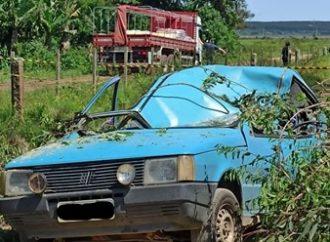 TRAGÉDIA: motorista morre após árvore cair em cima de carro