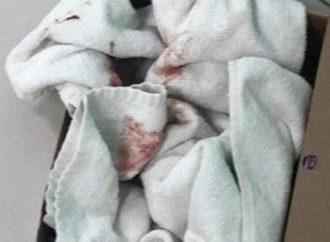 Recém-nascido é encontrado por catador em uma caixa de sapato