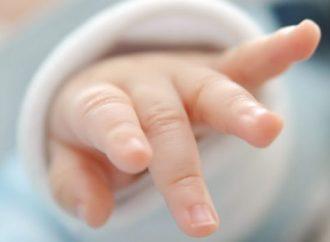 Bebê de 1 ano e 11 meses morre atropelado