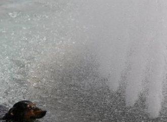 Canadá tem novo recorde de temperaturas e investiga se mais de 200 mortes estão ligadas ao calor