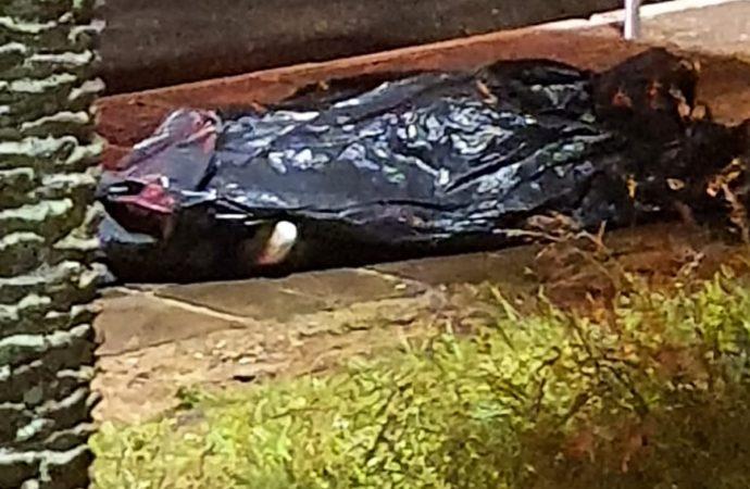 Durante assalto, jovem é baleada e morre em parada de ônibus