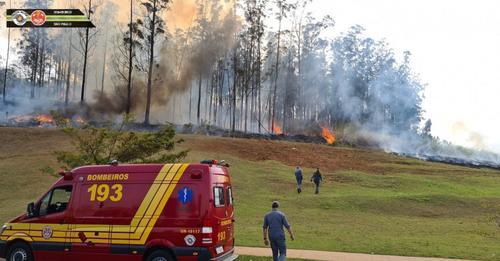 VÍDEOS: Sete Pessoas morrem em queda de aeronave em área de mata de São Paulo