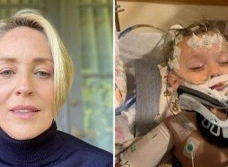 Sobrinho de Sharon Stone morre aos 11 meses